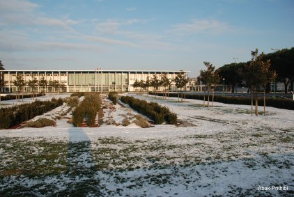 Toulouse-snow fall (6)