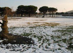 Toulouse-snow fall (8)