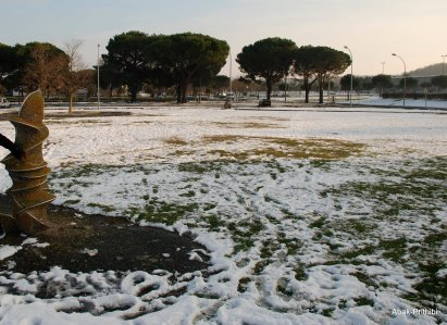 Toulouse-snow fall (8)