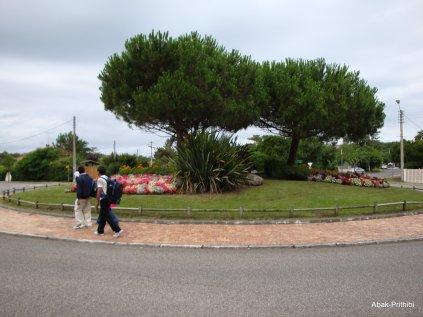 Arcachon, France (10)