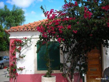 Cascais to Estoril (3)