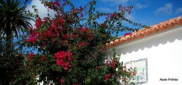 Cascais to Estoril (5)