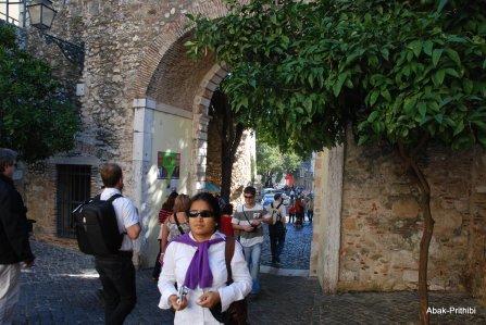 Castelo de São Jorge (14)