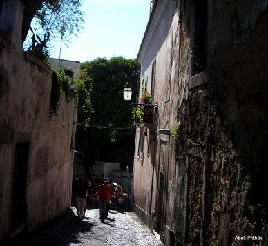 Castelo de São Jorge (20)