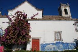 Castelo de São Jorge (7)