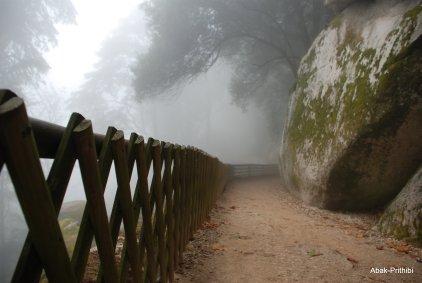 Castelo dos Mouros- Sintra (11)