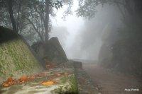 Castelo dos Mouros- Sintra (14)