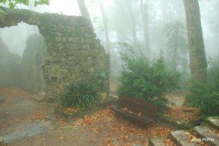 Castelo dos Mouros- Sintra (17)