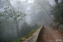 Castelo dos Mouros- Sintra (4)