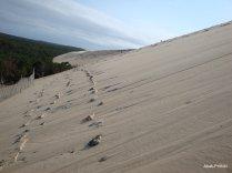 Dune du Pilat, France (8)