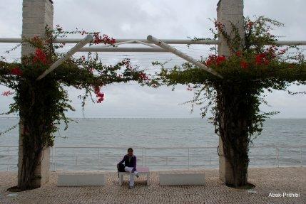 Lisbon-Portugal (12)