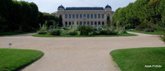 Jardin des Plantes, Paris (1)