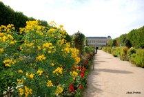 Jardin des Plantes, Paris (4)
