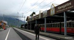 Wilderswil - Switzerland (1)