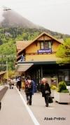 Wilderswil - Switzerland (2)
