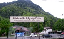 Wilderswil - Switzerland (4)