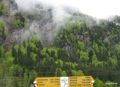 Wilderswil - Switzerland (5)