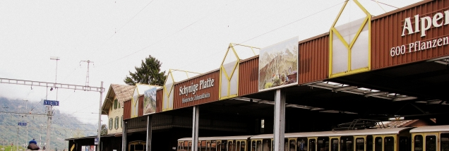 Wilderswil - Switzerland (7)