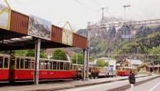 Wilderswil - Switzerland (8)