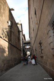 Gothic Quarter, Barcelona, Spain (7)