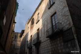 Gothic Quarter, Barcelona, Spain (9)