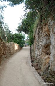 Park Güell, Spain (8)