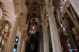 Sagrada Família, Spain (11)