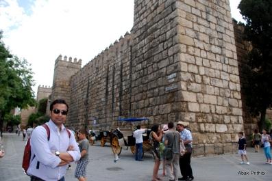 Alcázar of Seville, Spain (11)