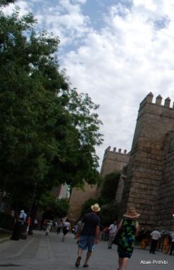 Alcázar of Seville, Spain (12)