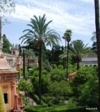 Alcázar of Seville, Spain (2)