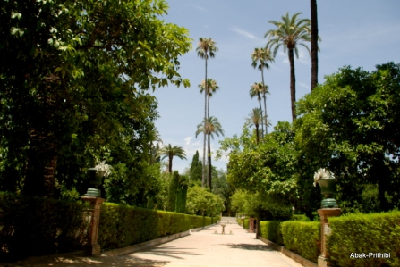 Alcázar of Seville, Spain (30)