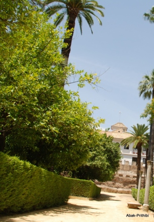 Alcázar of Seville, Spain (31)