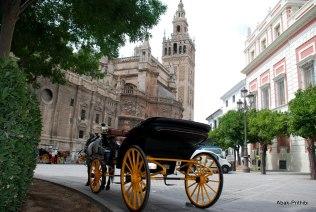 Alcázar of Seville, Spain (4)