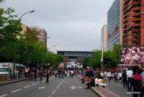 Carnaval de Toulouse (1)