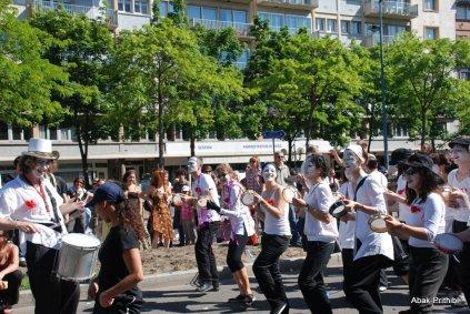 Carnaval de Toulouse (11)