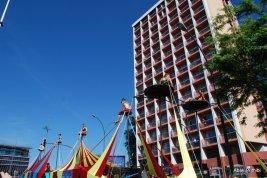 Carnaval de Toulouse (20)