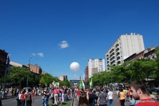Carnaval de Toulouse (9)