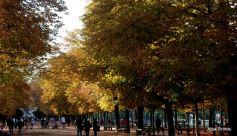 Jardin du Luxembourg, Paris, France (10)