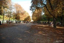 Jardin du Luxembourg, Paris, France (11)