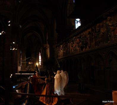 Notre-Dame de Paris, France (11)