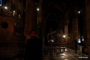 Notre-Dame de Paris, France (15)