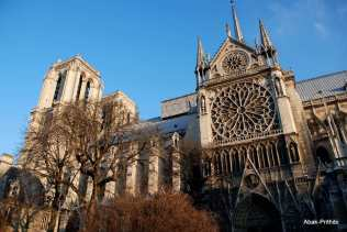 Notre-Dame de Paris, France (27)