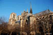 Notre-Dame de Paris, France (31)