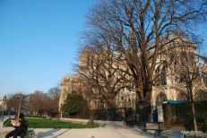 Notre-Dame de Paris, France (35)