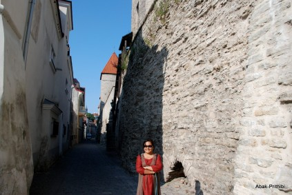 Tallinna lillefestival, Estonia (1)