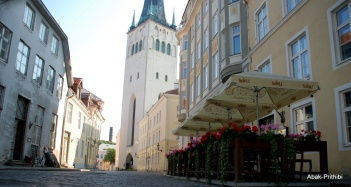 Tallinna lillefestival, Estonia (2)