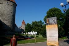 Tallinna lillefestival, Estonia (4)