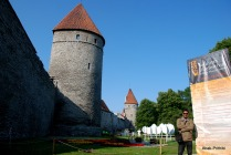Tallinna lillefestival, Estonia (5)