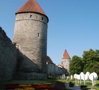 Tallinna lillefestival, Estonia (6)
