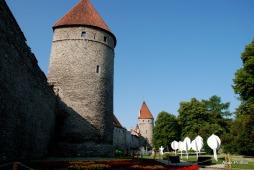 Tallinna lillefestival, Estonia (7)